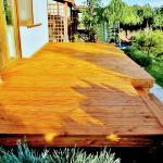Modrzew Syberyjski olejowanie kolor Garapa